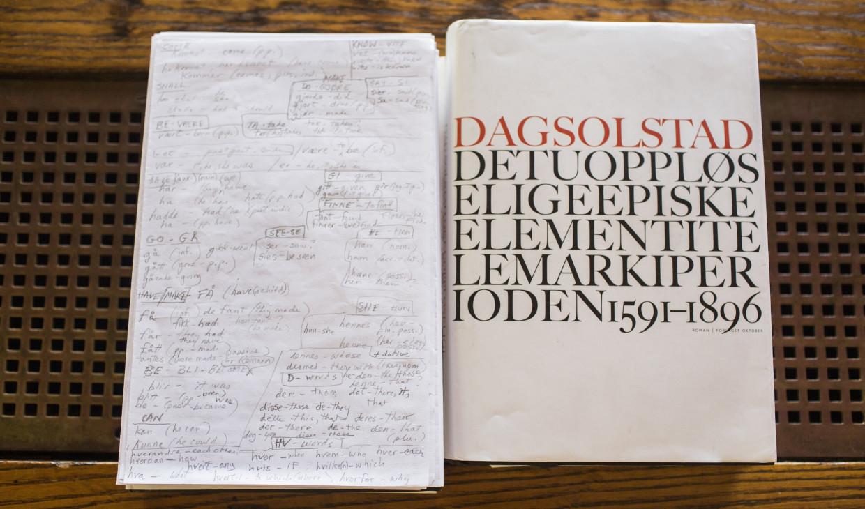 Lydia Davis Solstad book