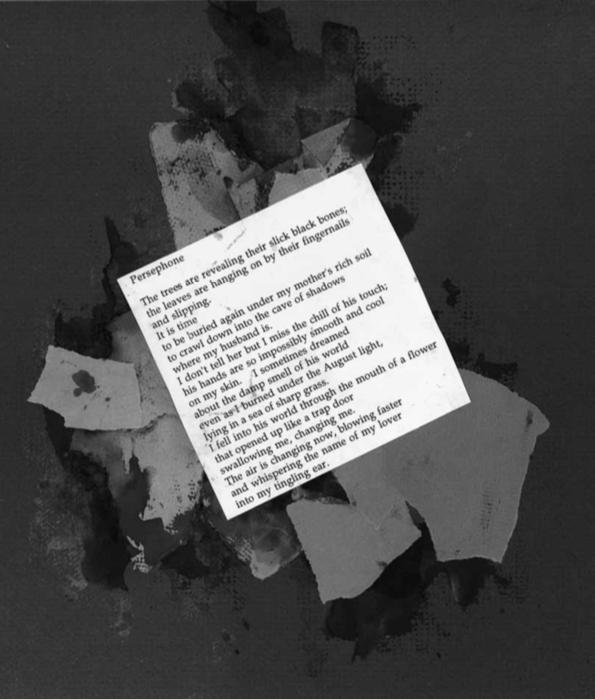 damian rogers poem