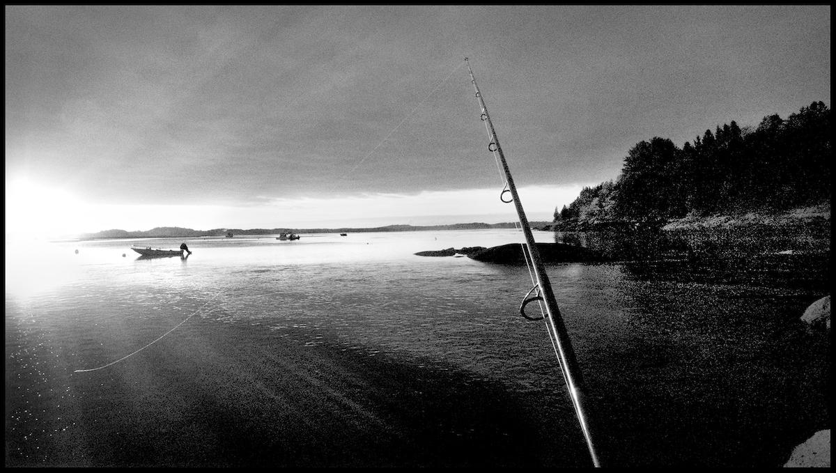 Essex River, Conomo Point, 2013