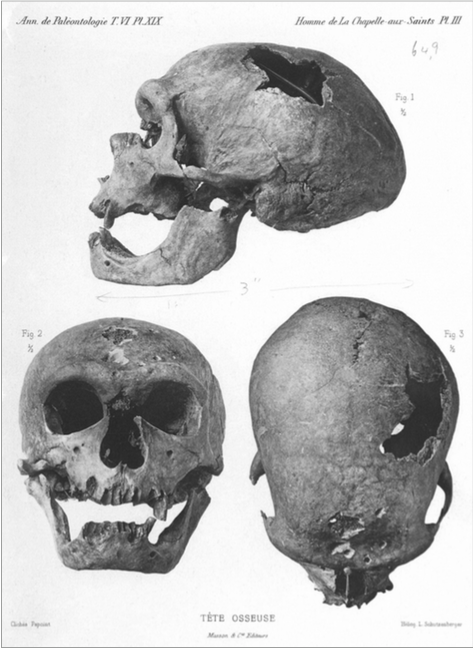 The Old Man of La Chapelle. These pen-and-ink drawings of the Neanderthal were created by Monsieur J. Papoint, under the direction of Marcellin Boule, and printed in Boule's L'Homme Fossile de La Chapelle-aux-Saints, 1911.