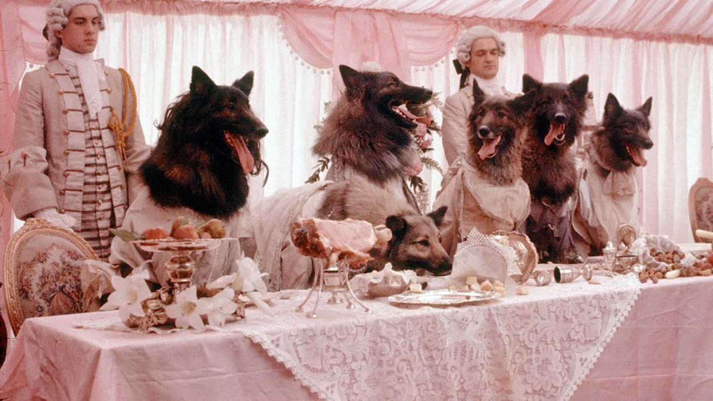 Still from the 1984 film 'The Company of Wolves'