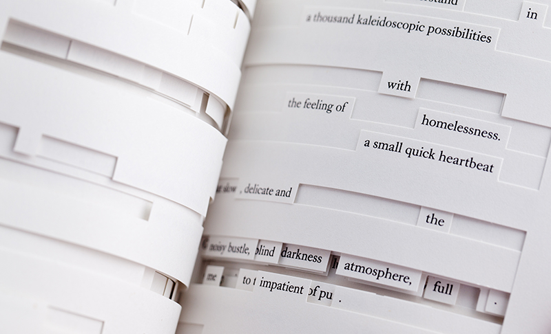 Tree of Codes, Jonathan Safran Foer