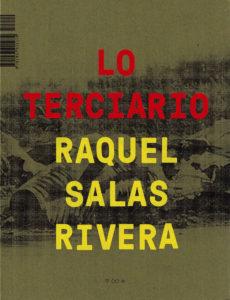 Raquel Salas Rivera, lo terciario / the tertiary
