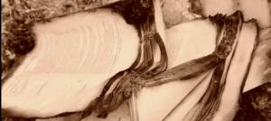burned books
