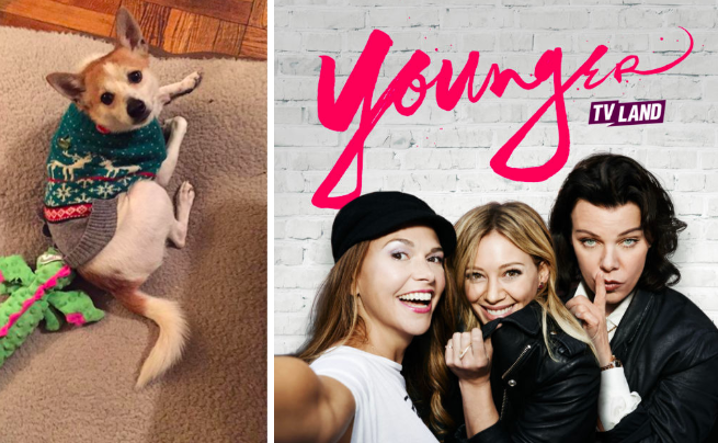 Oliver, dog, Younger, Hilary Duff, Sutton Foster