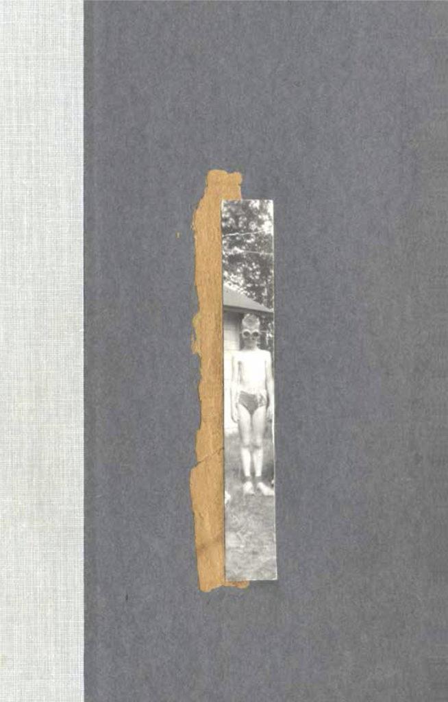 Anne Carson, Nox