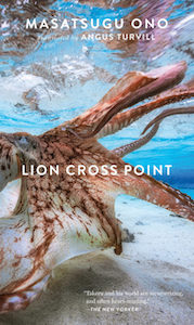 Lion Cross Point