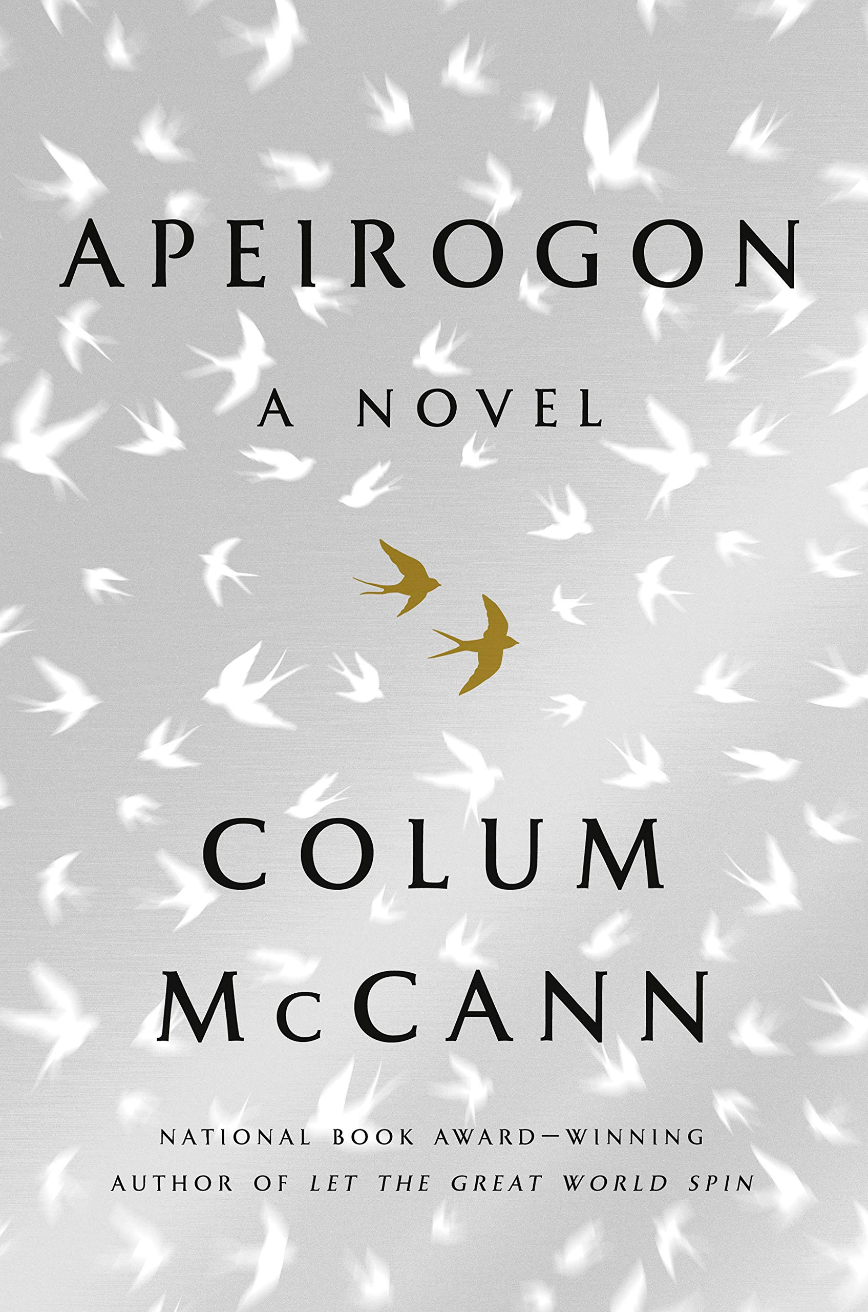 Colum McCann,Apeirogon