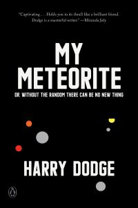 Harry Dodge's MY METEORITE