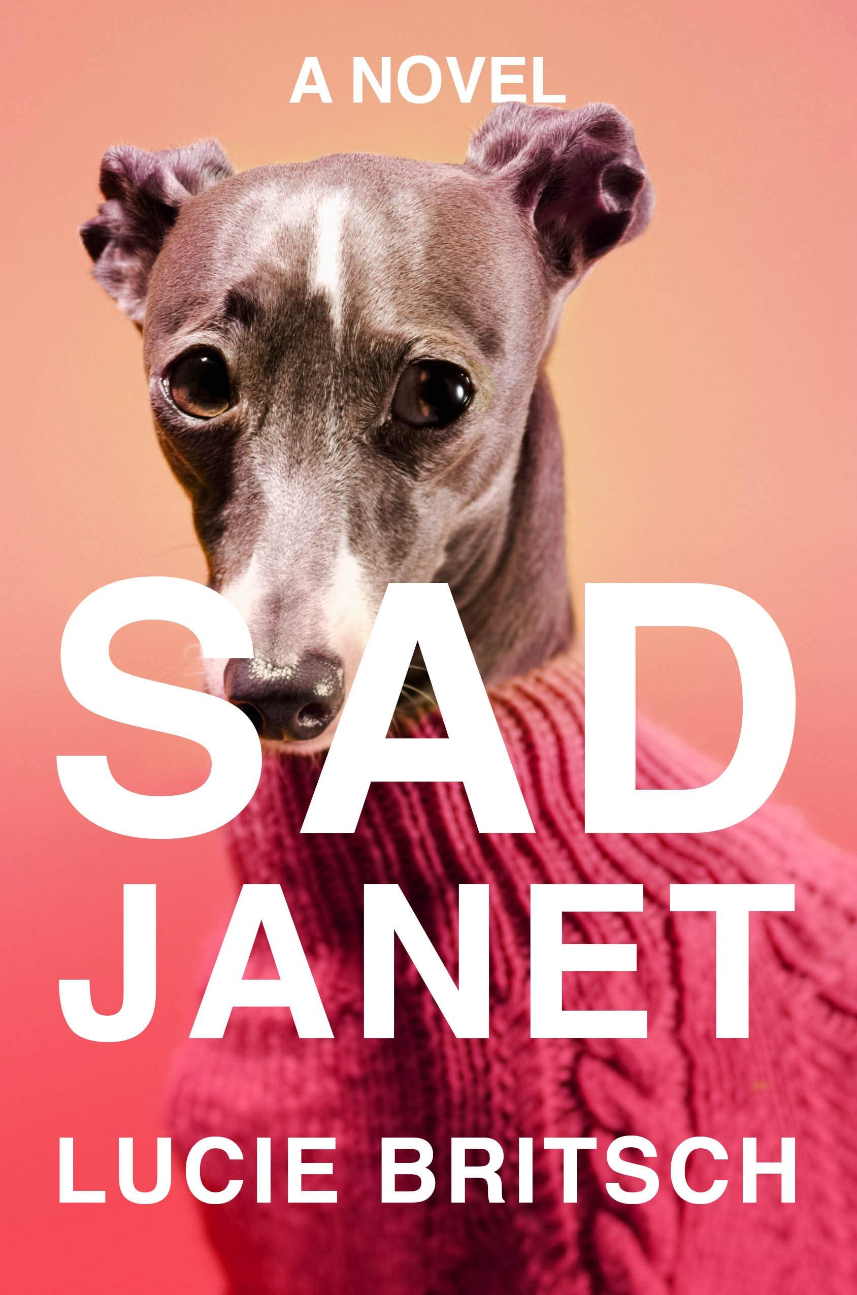 Lucie Britsch, <em>Sad Janet</em>; cover design by Na Kim (Riverhead, July 16)