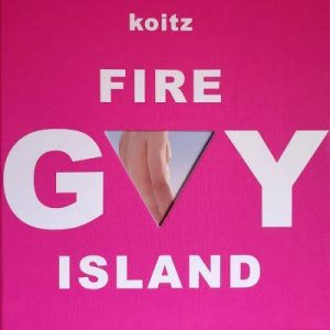 gay fire island