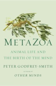 Peter Gofrey-Smith, Metazoa: Animal Life and the Birth of the Mind (FSG, November 10)