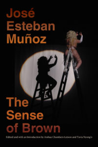 The Sense of Brown by José Esteban Muñoz