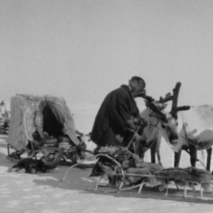 On the Soviet Attempt to 'Tame' the Tundra, the Native Chukchi People, and Their Reindeer