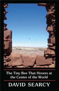 David Searcy, The Tiny Bee That Hovers at the Center of the World,