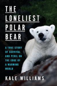 loneliest polar bar