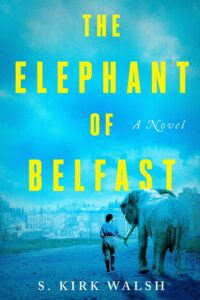 the elephant of belfast_s kirk walsh