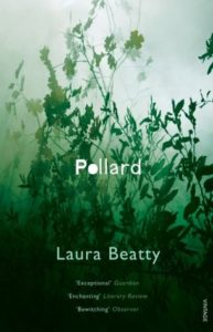 Pollardby Laura Beatty