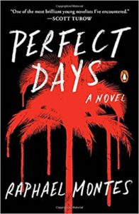 Raphael Montes Perfect Days