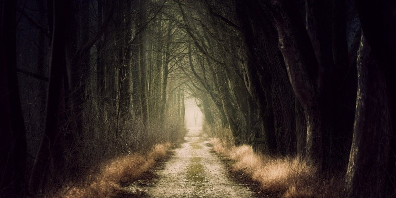 scary-road-feat.jpg